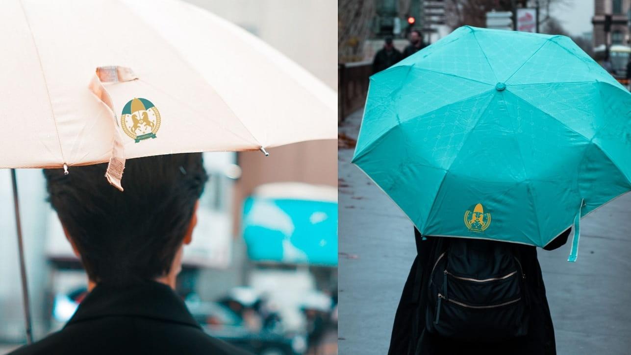 2 Fold Umbrella and 3 Fold Umbrella