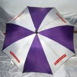 Umbrella Manufacturing Company (5)