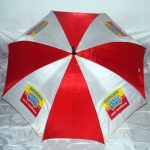 promotional umbrella manufacturer (6)